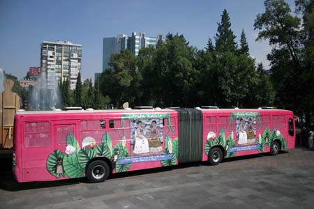 Mexico's Women Buses